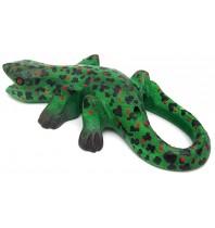Spotted Gecko Lizard