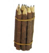 Branch Pencils