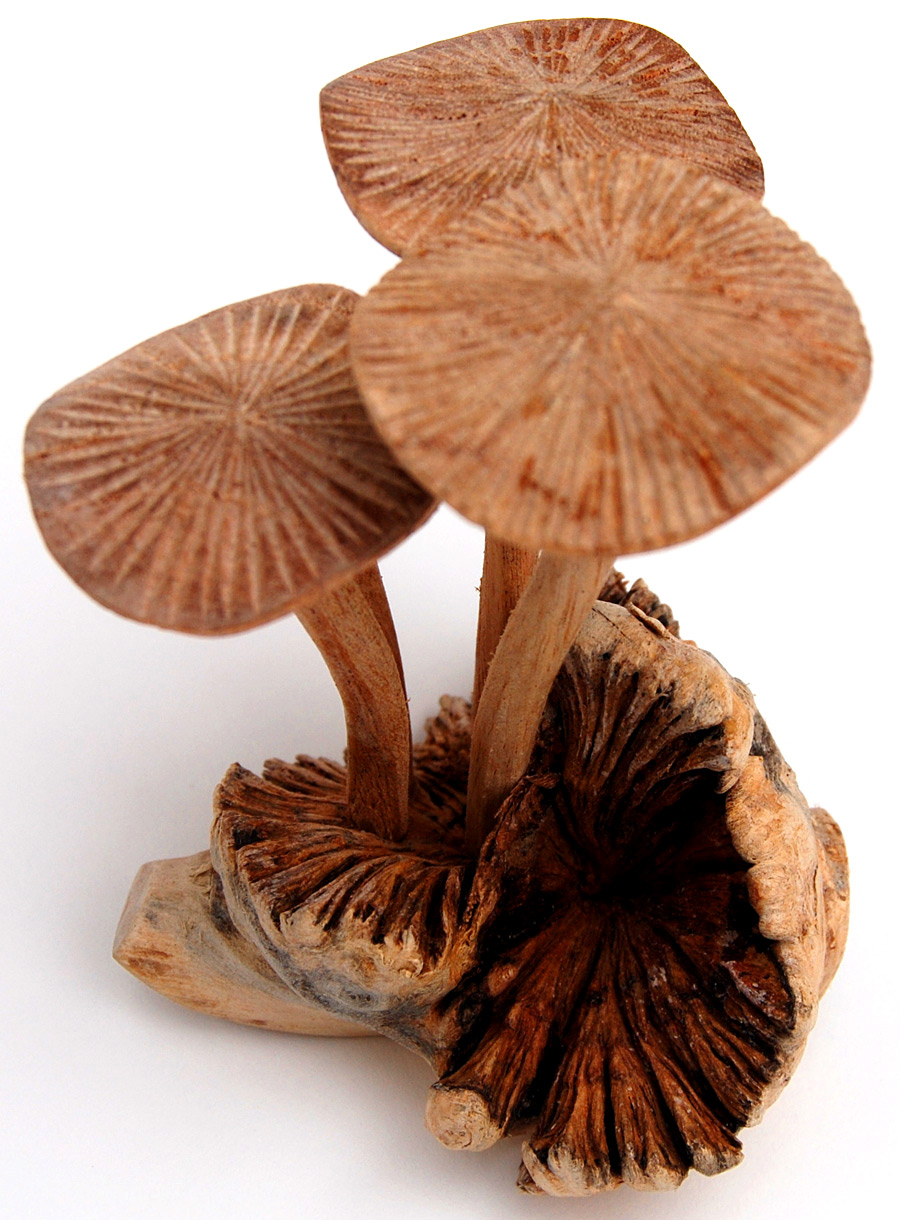 Handmade Wooden Mushrooms