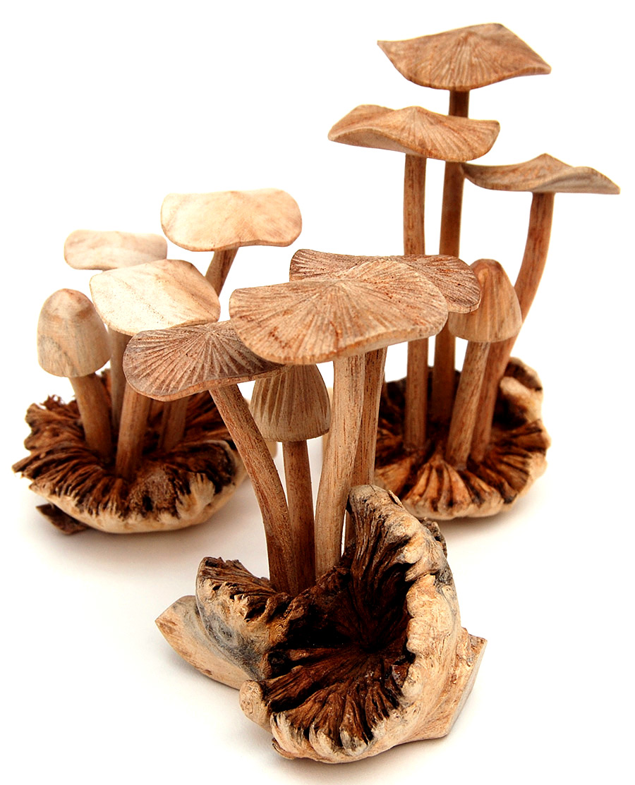 Wooden handcrafted mushroom carvings hand carved